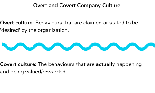 Graphic illustrating Covert and Overt company cultures